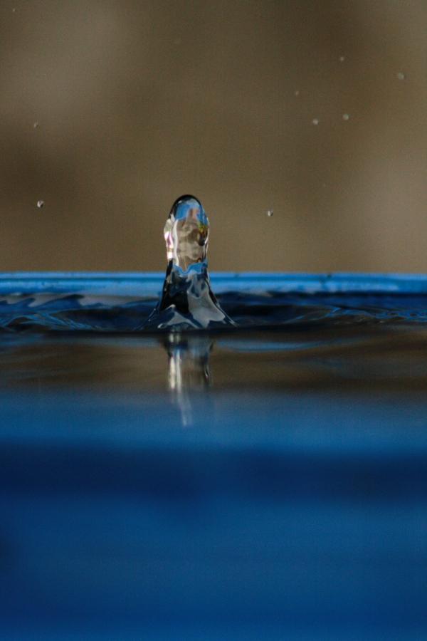 drop (4)