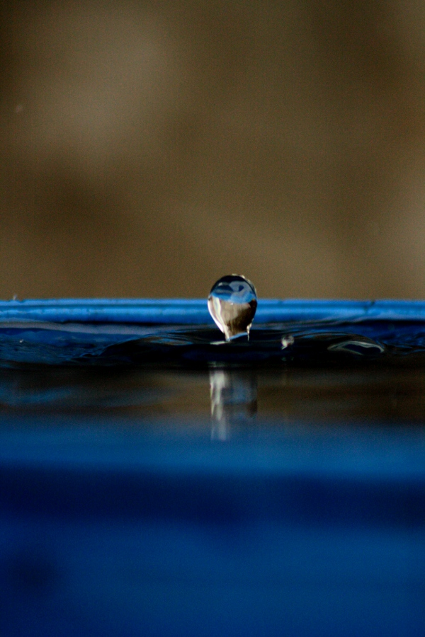 drop (5)